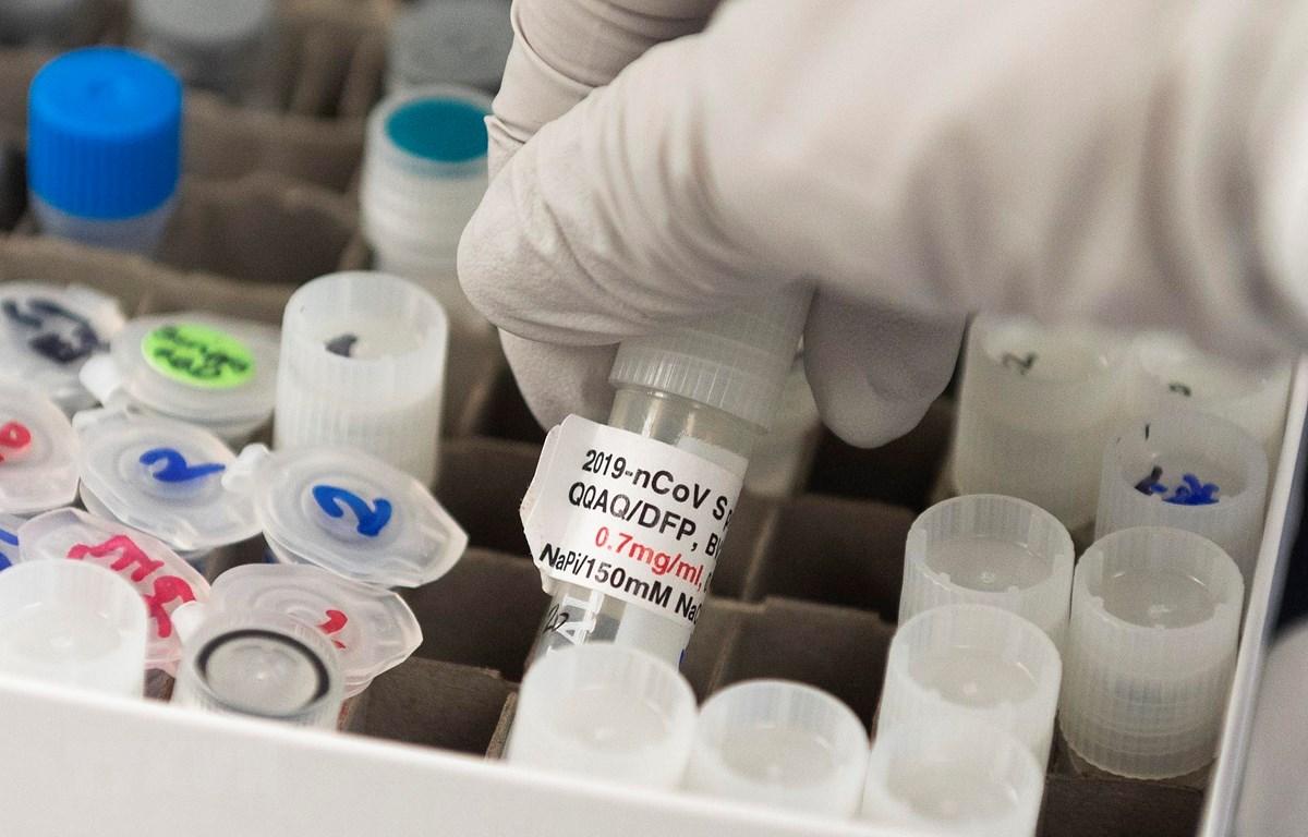Nghiên cứu sản xuất vắcxin ngừa COVID-19 tại Gaithersburg, Maryland, Mỹ. (Ảnh: AFP/TTXVN)