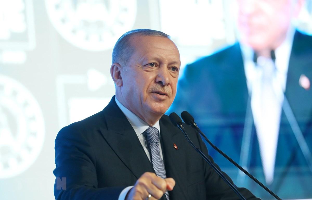 Tổng thống Thổ Nhĩ Kỳ Tayyip Erdogan. (Ảnh: THX/TTXVN)