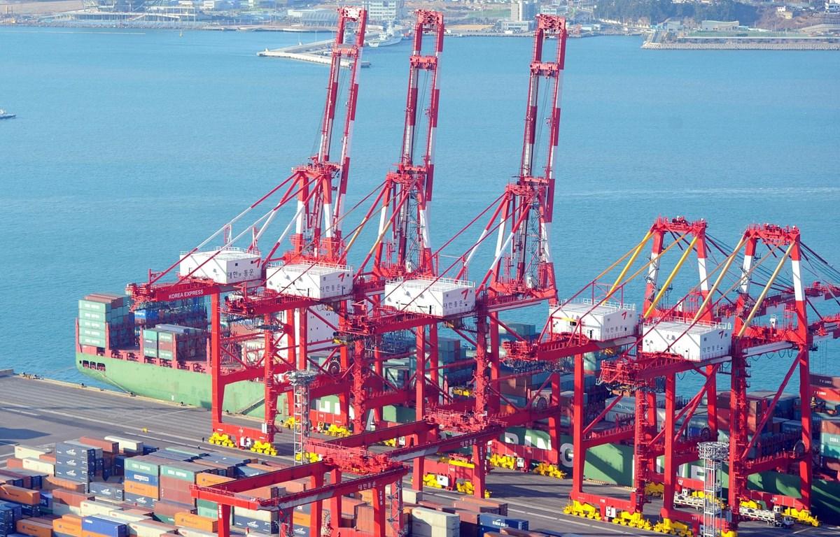Container hàng hóa được bốc dỡ tại thành phố cảng Busan, Đông Nam Hàn Quốc ngày 11/1/2011. (Ảnh: AFP/TTXVN)