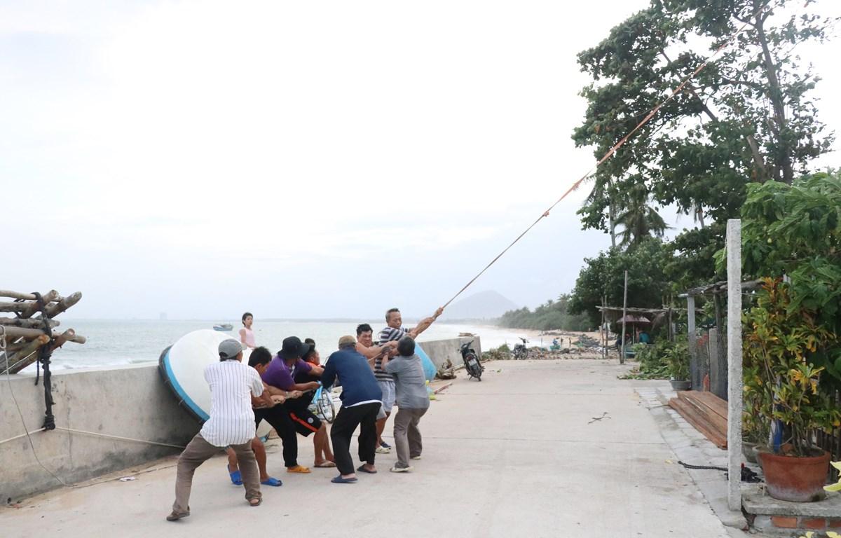 Người dân thôn Mỹ Quang Bắc, xã An Chấn hỗ trợ nhau chặt tỉa cây xanh trước bão số 10. (Ảnh: Phạm Cường/TXVN)