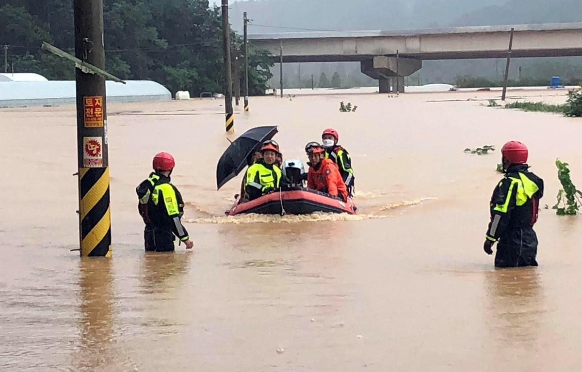 Nhân viên cứu hộ sơ tán người dân khỏi vùng lũ tại Gwangju, Hàn Quốc ngày 8/8/2020. (Ảnh: Yonhap/TTXVN)