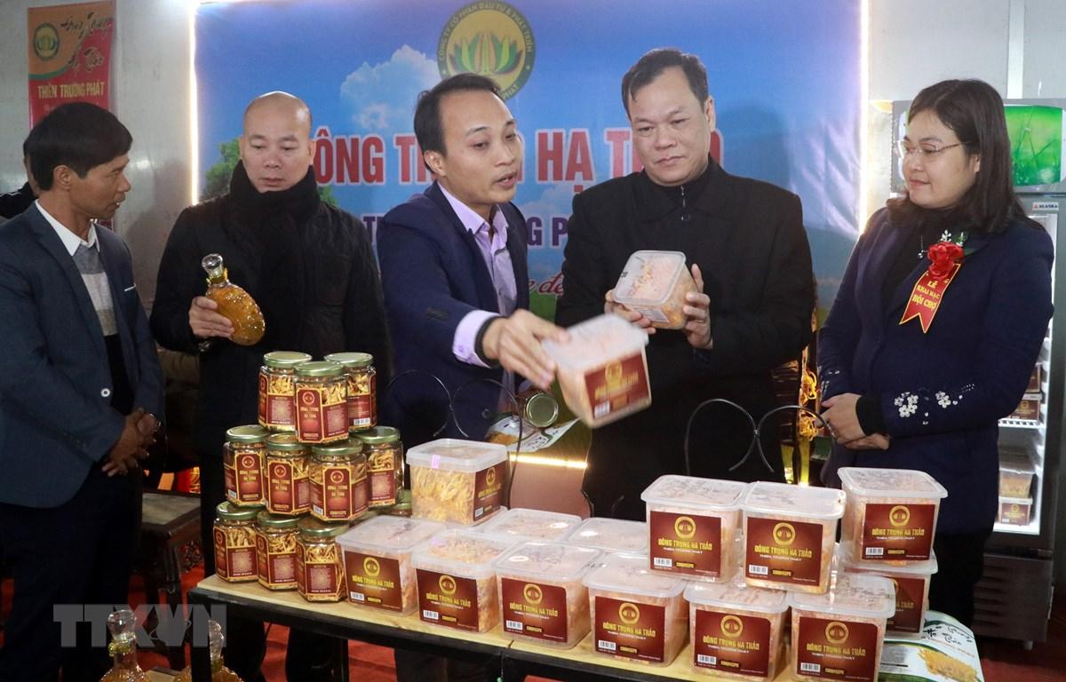 Lãnh đạo tỉnh Nam Định và Cục Xúc tiến thương mại cùng các đại biểu thăm quan các gian hàng tại Hội chợ Công thương khu vực phía Bắc-Nam Định năm 2020. (Ảnh: Nguyễn Lành/TTXVN)