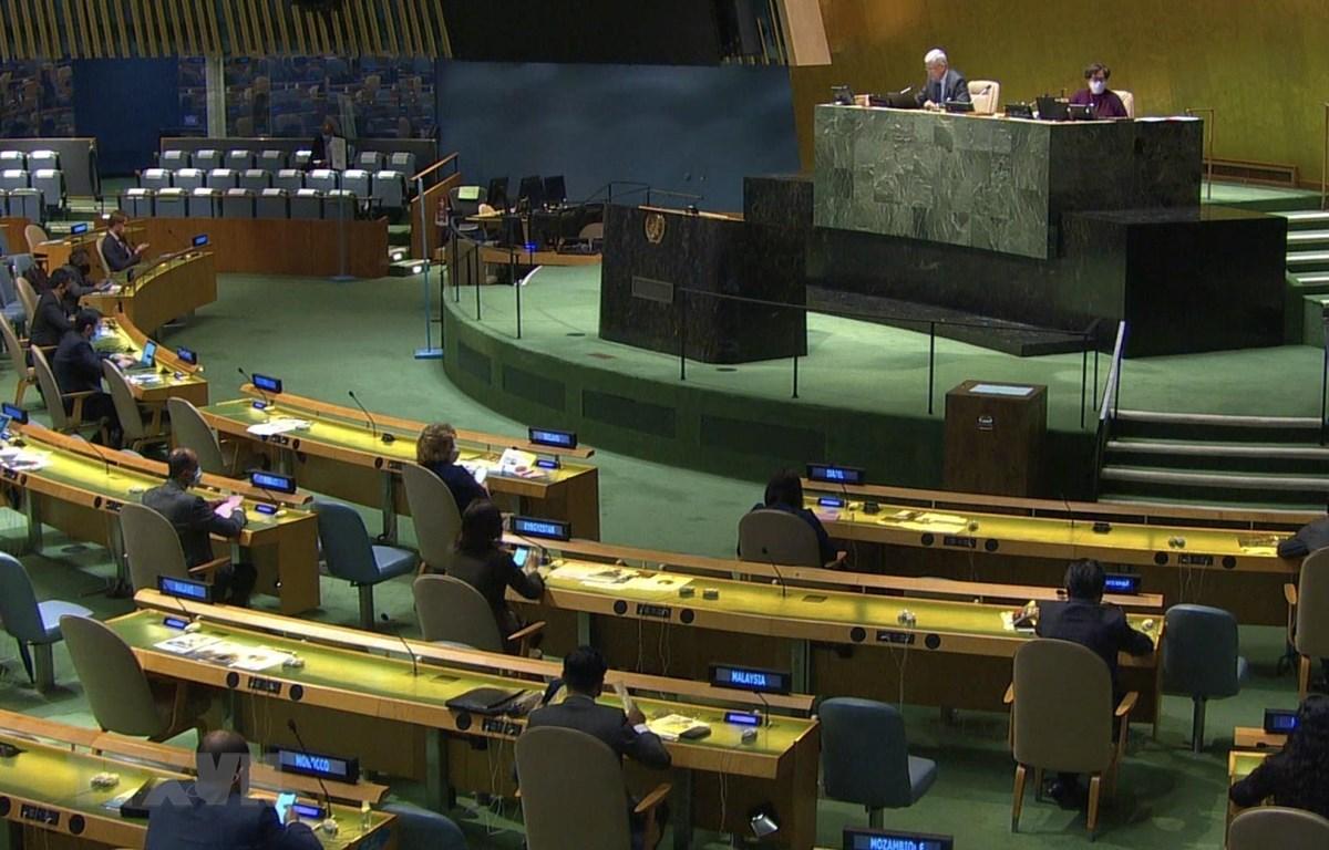 Đại hội đồng LHQ bỏ phiếu bầu thẩm phán Tòa án Công lý quốc tế. (Ảnh: Hữu Thanh/TTXVN)