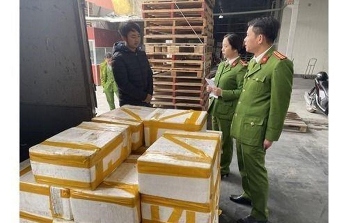 250kg cá khoai ướp phóc môn được đựng trong 25 thùng xốp bị lực lượng chức năng thu giữ. (Ảnh: Trịnh Duy Hưng/TTXVN)