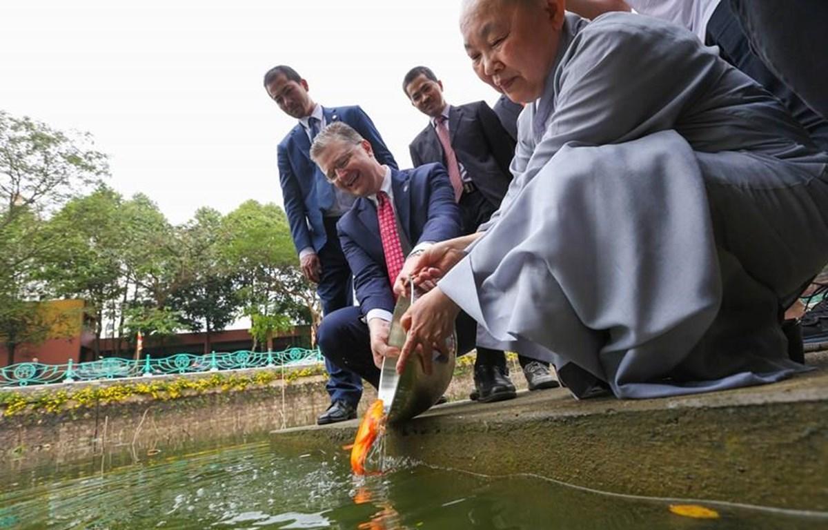 Đại sứ Hoa Kỳ tại Việt Nam Daniel J. Kritenbrink thực hiện nghi lễ thả cá chép tại chùa Kim Liên để tiễn ông Công ông Táo về trời theo truyền thống của người Việt. (Ảnh: Minh Sơn/Vietnam+)