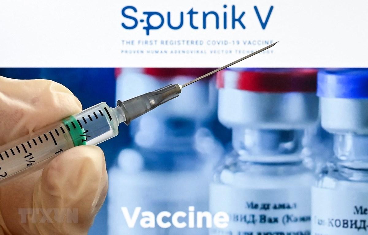 Vắcxin Sputnik V phòng COVID-19 của Nga. (Ảnh: AFP/TTXVN)