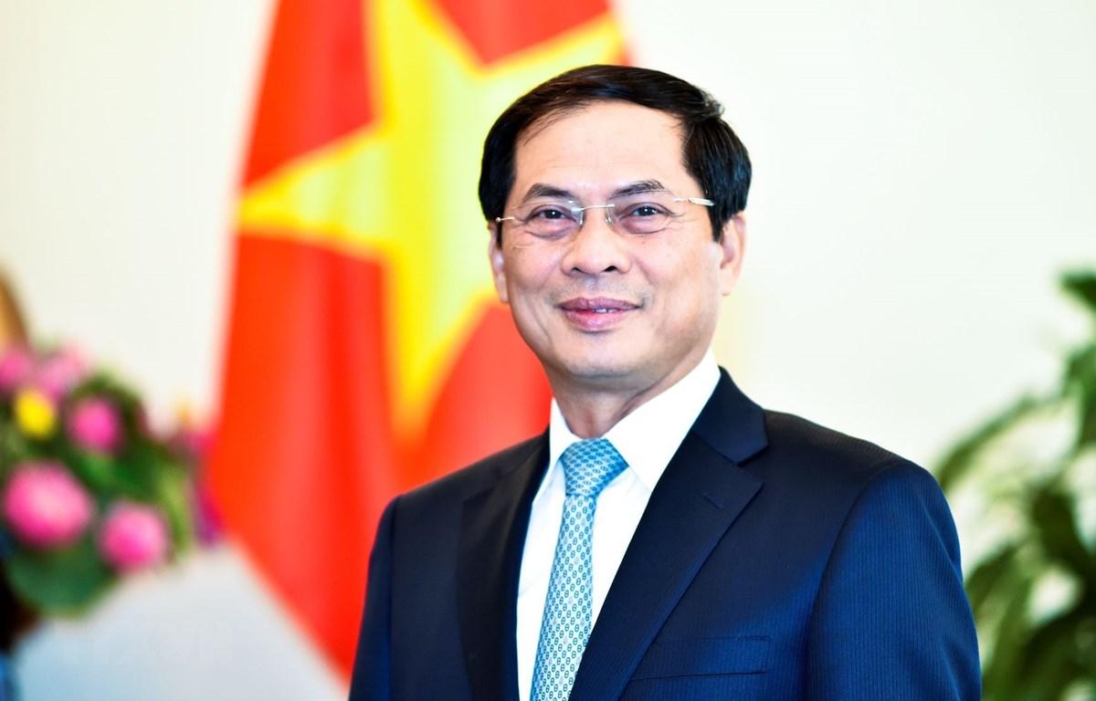 Thứ trường Thường trực Bộ Ngoại giao Bùi Thanh Sơn. (Ảnh: TTXVN phát)