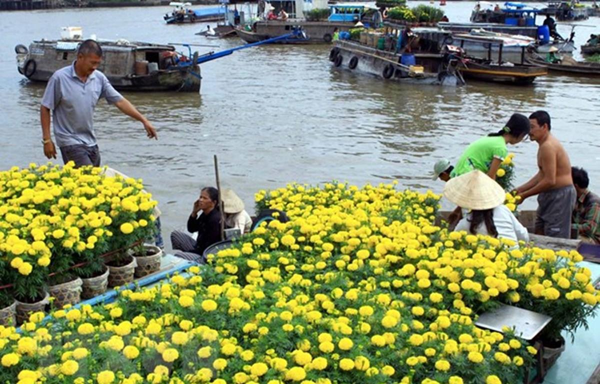 Rừng tràm Trà Sư (huyện Tịnh Biên) là điểm du lịch sinh thái thu hút đông khách du lịch đến với An Giang. (Ảnh: Thanh Sang/TTXVN)
