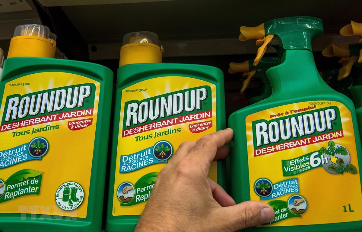 Thuốc diệt cỏ Roundup của Công ty hóa chất Mỹ Monsanto được bày bán tại một cửa hàng ở Lille, Pháp. (Ảnh: AFP/TTXVN)