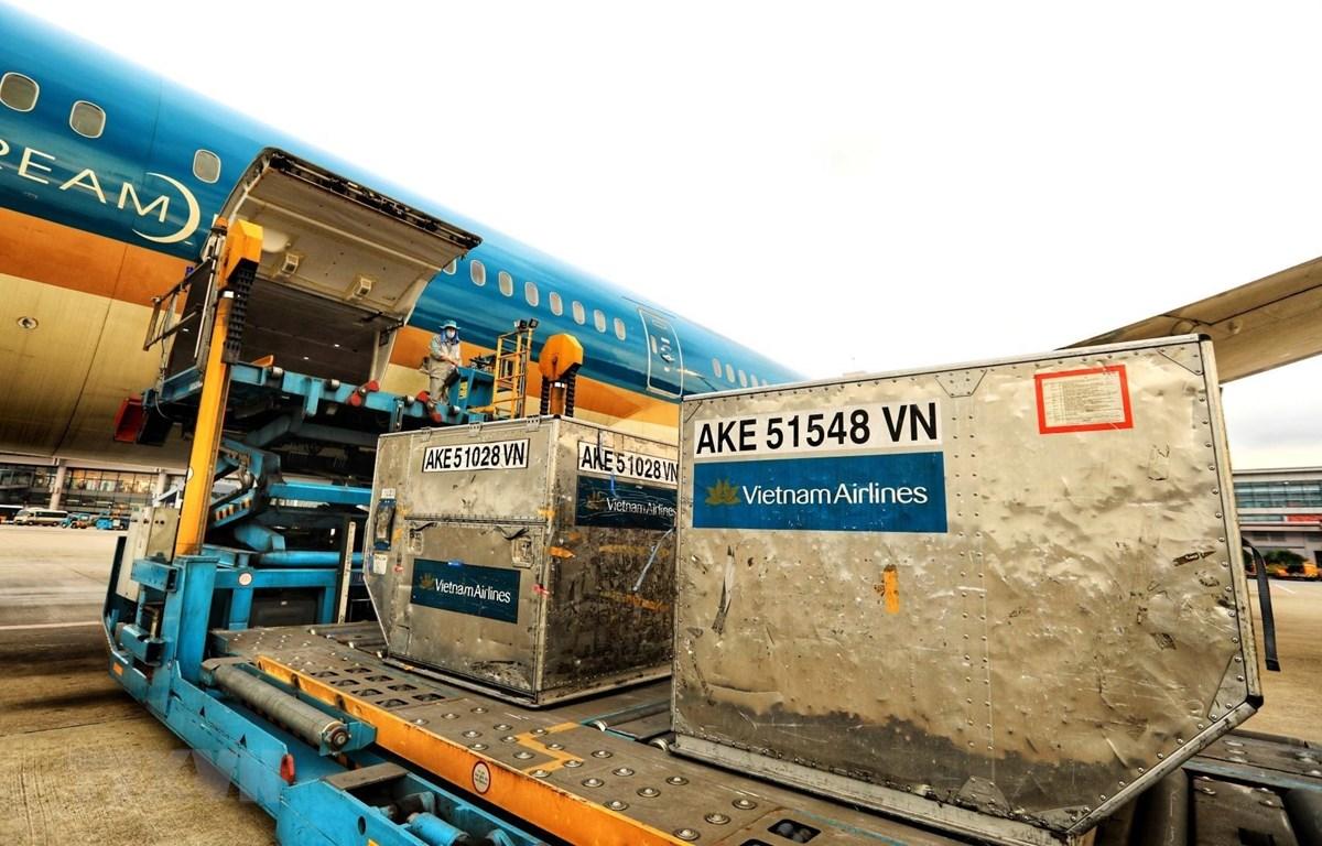 Chuyến bay chuyên chở khẩn cấp số vật tư, thiết bị y tế gồm 2 triệu khẩu trang y tế, 200 máy thở và 10.000kg hóa chất khử khuẩn Chloramine B để giúp Lào ứng phó với dịch COVID-19. (Ảnh: Thành Đạt/TTXVN)