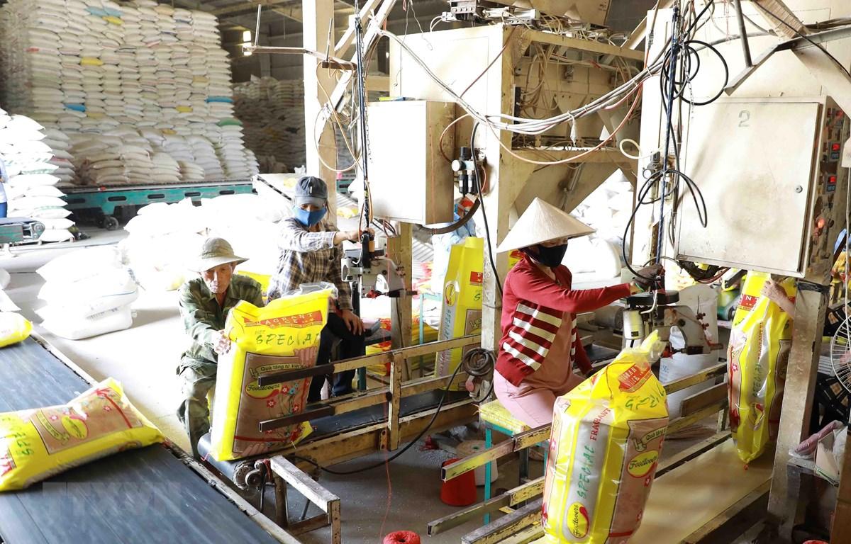 Đóng gói gạo xuất khẩu theo đơn đặt hàng tại nhà máy chế biến lương thực Long An (thuộc Vinafood 2). (Ảnh: Vũ Sinh/TTXVN)