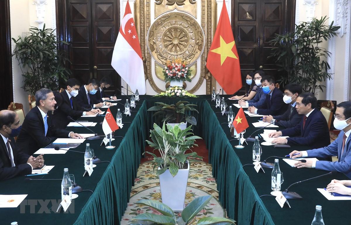 Bộ trưởng Bộ Ngoại giao Bùi Thanh Sơn hội đàm với Bộ trưởng Ngoại giao Singapore Vivian Balakrishnan. (Ảnh: Lâm Khánh/TTXVN)