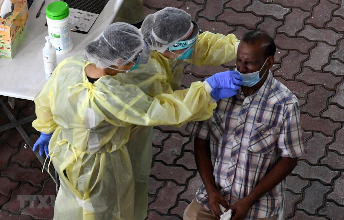 Nhân viên y tế lấy mẫu xét nghiệm COVID-19 tại Singapore. (Ảnh: AFP/TTXVN)