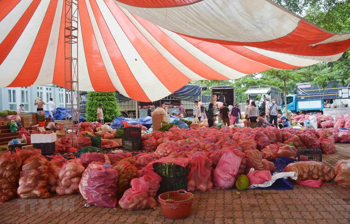 Điểm tập kết nông sản tại Tỉnh Đoàn Đắk Lắk chờ vận chuyển đi hỗ trợ cho các tỉnh phía Nam trong đợt dịch lần thứ 4. (Ảnh: Hoài Thu/TTXVN)