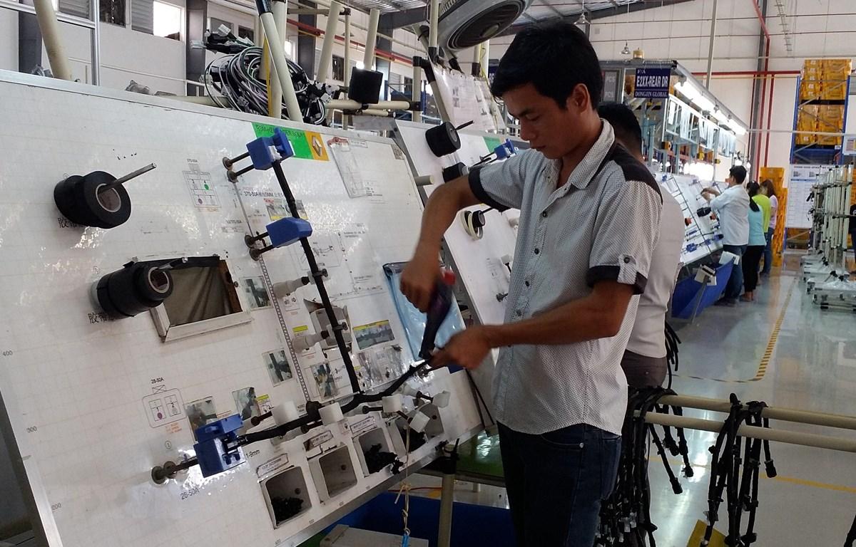 Sản xuất dây cáp điện tại Công ty TNHH Dongjin Global (100% vốn Hàn Quốc) tại Khu công nghiệp Đất Đỏ I, huyện Đất Đỏ, Bà Rịa-Vũng Tàu. (Ảnh: Hoàng Nhị/TTXVN)