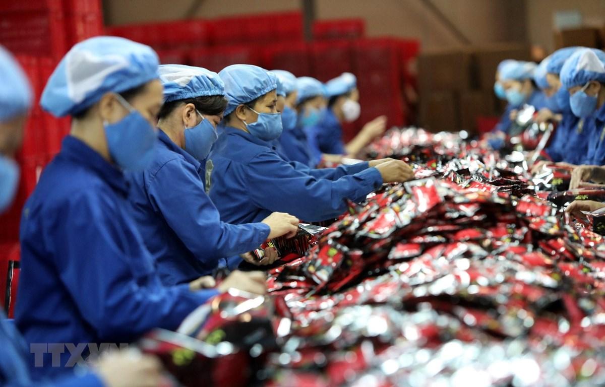 Công ty cổ phần càphê hòa tan Trung Nguyên tại Bắc Giang hiện đang xuất khẩu sang nhiều nước như Trung Quốc, Nga, Singapore…đã đầu tư thêm nhiều dây chuyền mới để tiếp cận EVFTA. (Ảnh: Danh Lam/TTXVN)