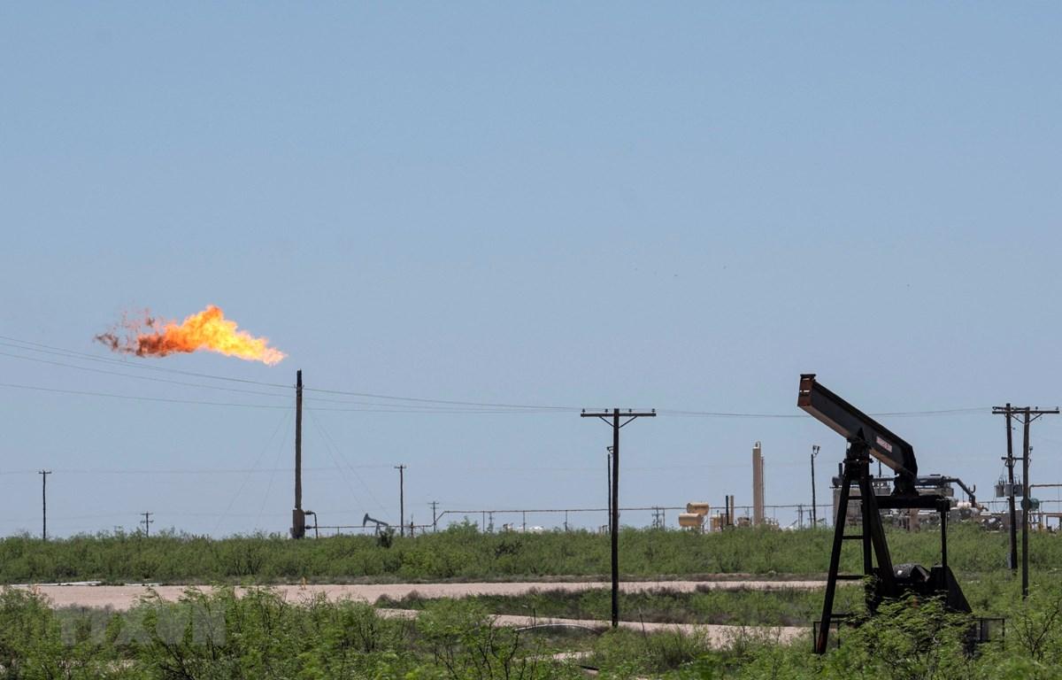 Một cơ sơ khai thác dầu tại Odessa, Texas, Mỹ. (Ảnh: AFP/TTXVN)