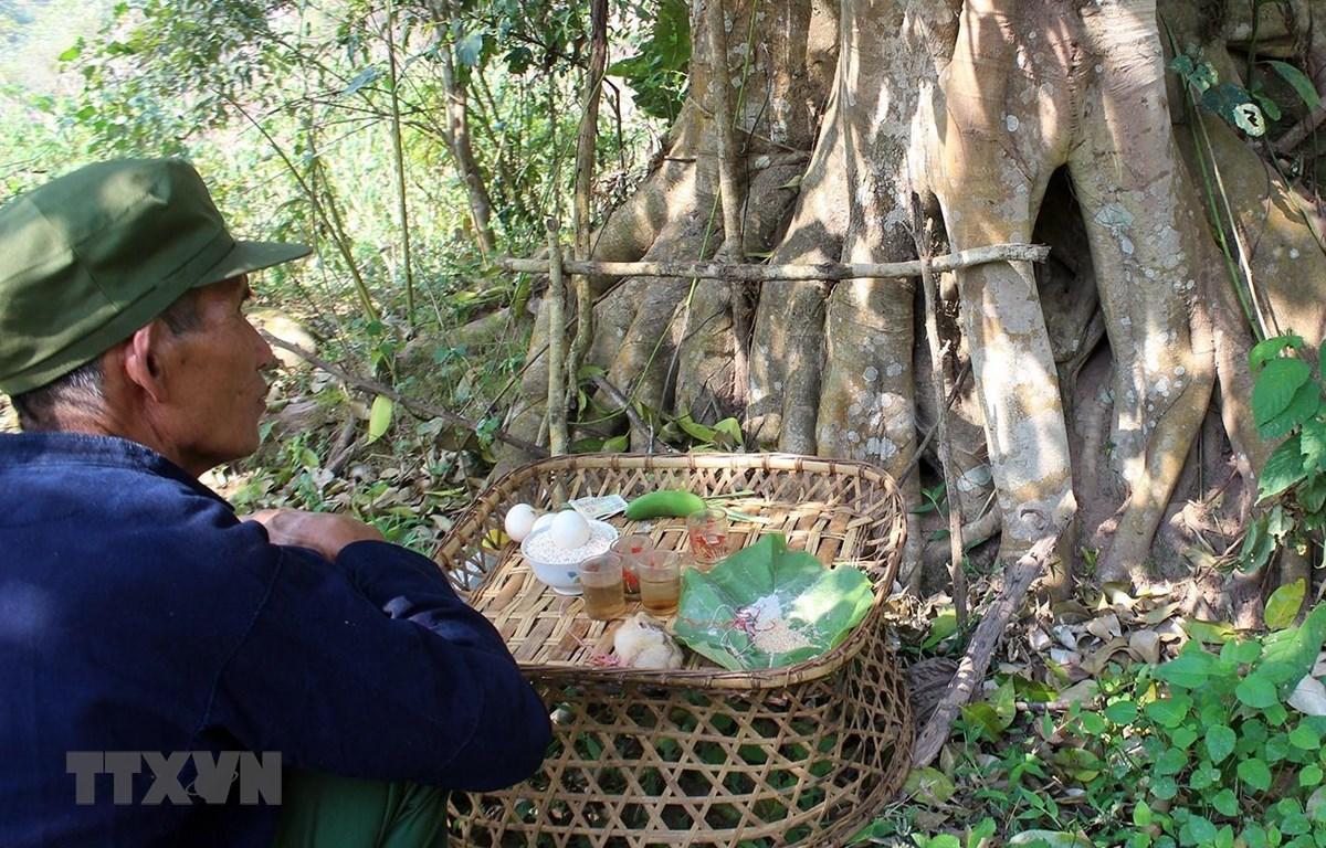 Lễ cúng thần rừng của cộng đồng dân tộc Hà Nhì. (Ảnh: Phan Tuấn Anh/TTXVN)