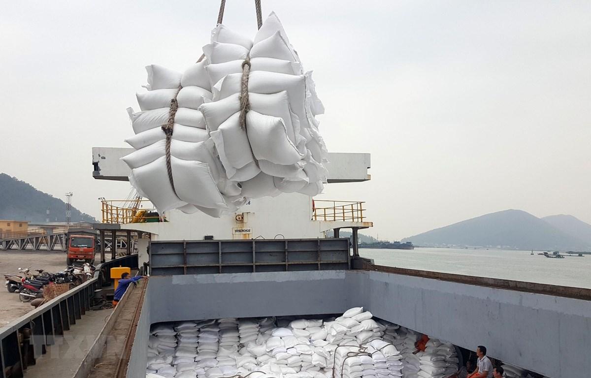 Bốc xếp gạo xuất khẩu tại cảng Cửa Lò - Nghệ An. ( Ảnh: Danh Lam/TTXVN)