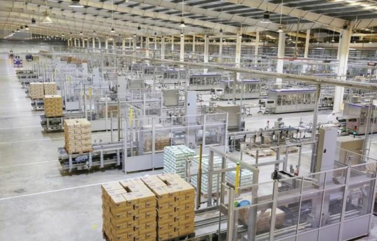 Sau cổ phần hóa, Công ty cổ phần sữa Việt Nam - Vinamilk tiếp tục phát triển mạnh và được Forbes Việt Nam đánh giá là Công ty niêm yết tốt nhất Việt Nam năm thứ 7 liên tiếp. (Ảnh: VNM/Vietnam+)