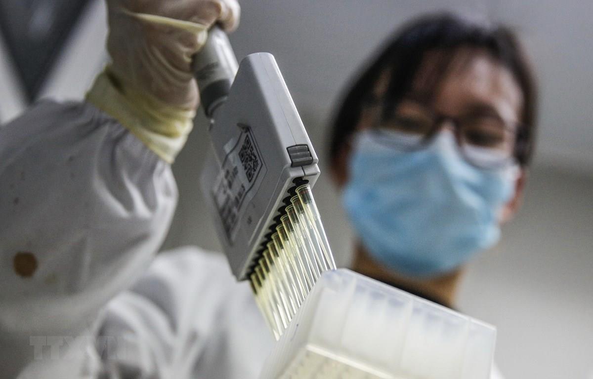 Kỹ thuật viên thử nghiệm vaccine phòng COVID-19 tại phòng thí nghiệm ở Bắc Kinh, Trung Quốc, ngày 16/3. (Ảnh: THX/TTXVN)