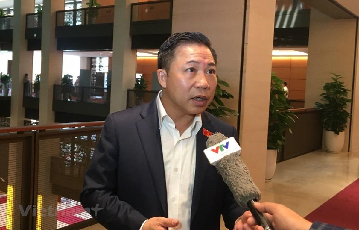 Đại biểu Quốc hội Lưu Bình Nhưỡng trả lời phỏng vấn. (Ảnh: PV/Vietnam+)