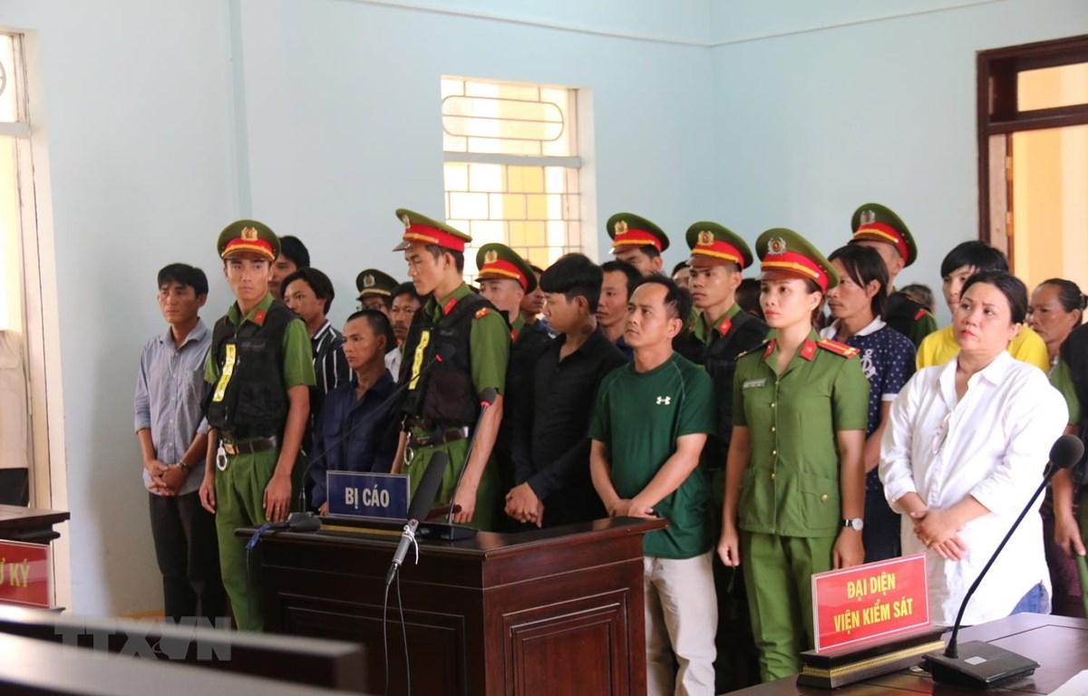 Các bị cáo tại phiên tòa. (Ảnh: Nguyễn Thanh/TTXVN)