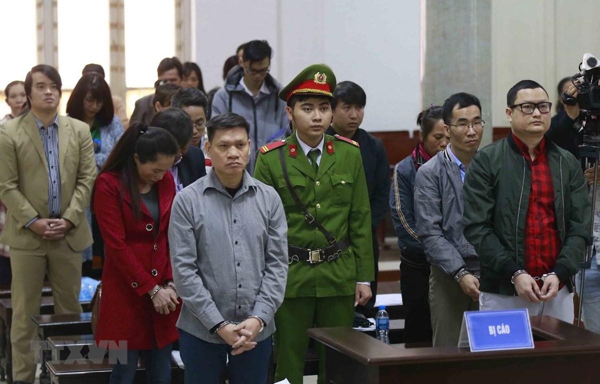 Các bị cáo tại phiên xét xử. (Ảnh: Doãn Tấn/TTXVN)