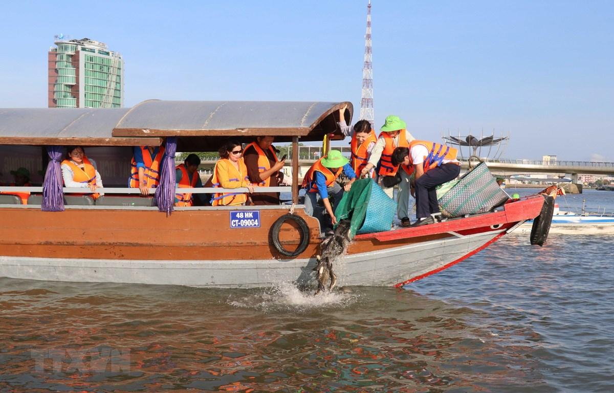 Thả cá ra môi trường tự nhiên nhằm tái tạo nguồn lợi thủy sản. (Ảnh: Ngọc Thiện/TTXVN)