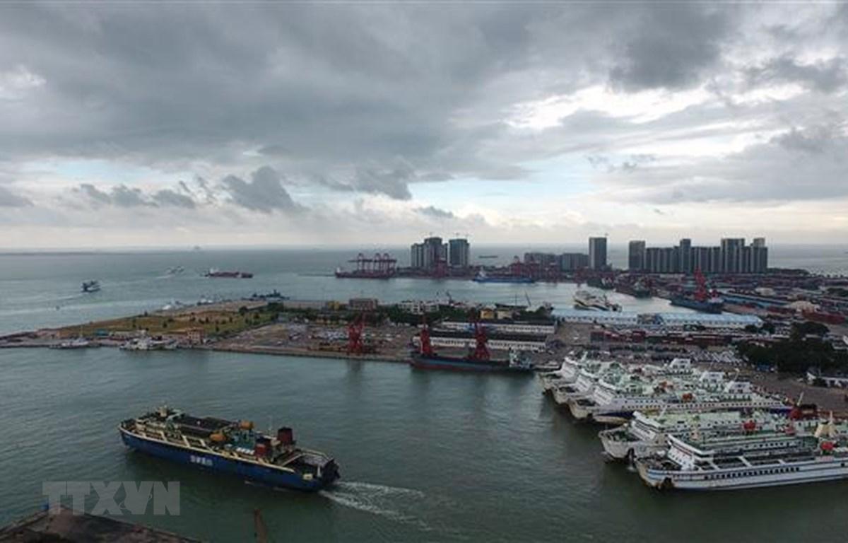 Phà chở khách neo tại cảng để tránh bão ở Hải Khẩu, Hải Nam, Trung Quốc. (Ảnh: THX/TTXVN)