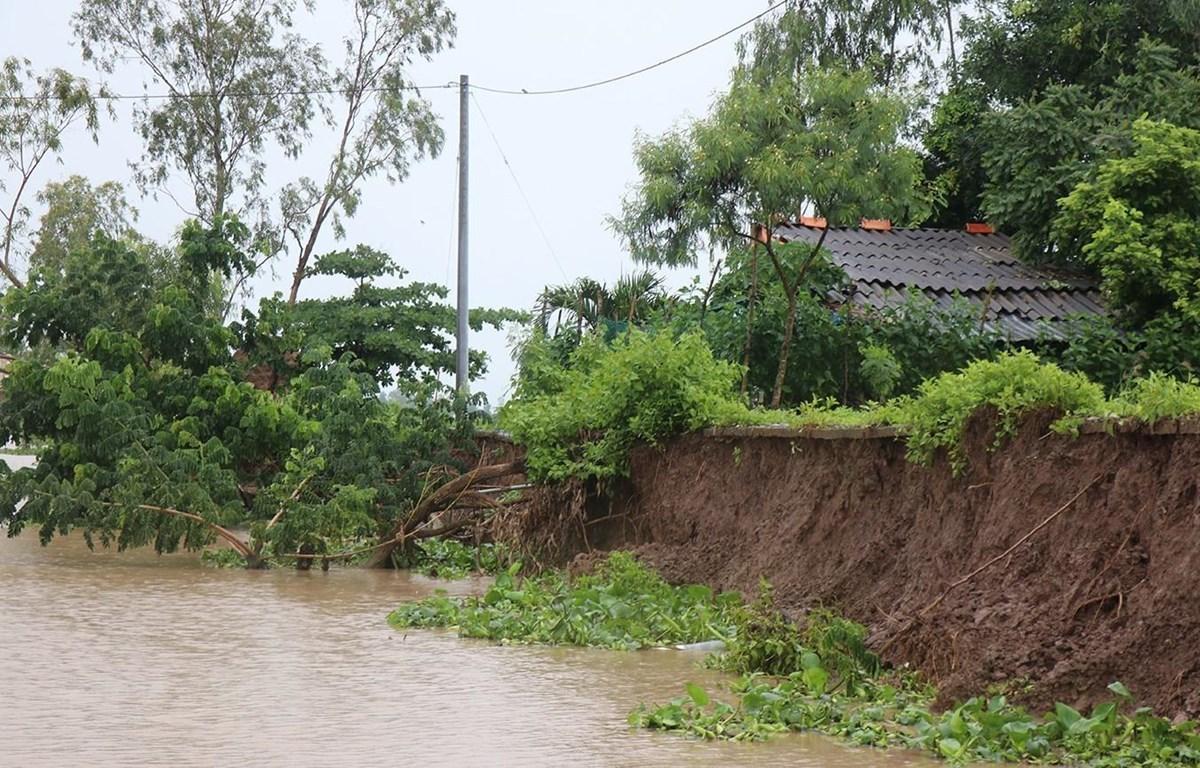 Nhà ở người dân dọc tuyến kênh Phú Tòng đứng trước nguy cơ sạt lở tuột xuống kênh. (Ảnh: Huỳnh Sử/TTXVN)