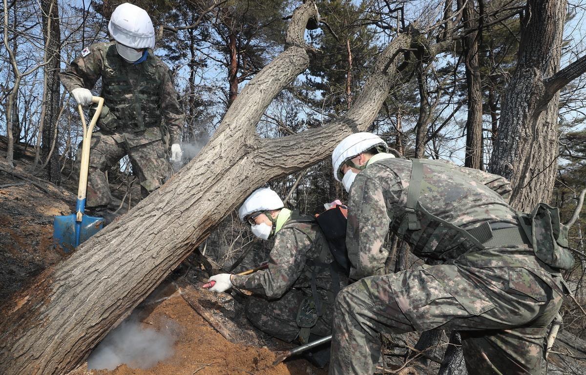 Binh sĩ Hàn Quốc nỗ lực dập các đám cháy tại thị trấn biên giới Goseong ngày 5/4. (Nguồn: YONHAP/TTXVN)