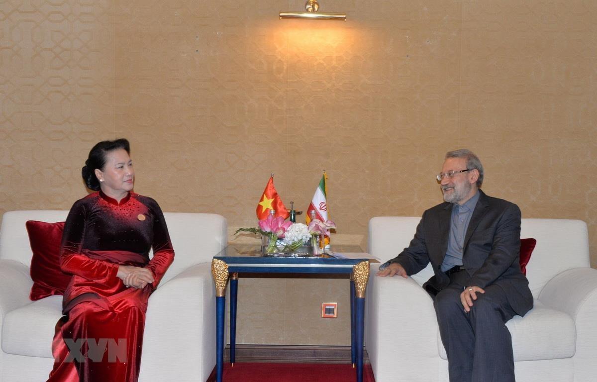 Chủ tịch Quốc hội Nguyễn Thị Kim Ngân đã hội kiến Chủ tịch Quốc hội Iran Ali Ardeshir Larijani. (Ảnh: Trọng Đức/TTXVN)