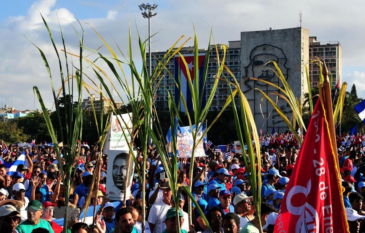Những biểu tượng của Cuba như cây mía, luôn là phần không thể thiếu của các buổi lễ tuần hành. (Ảnh: Lê Hà/TTXVN)