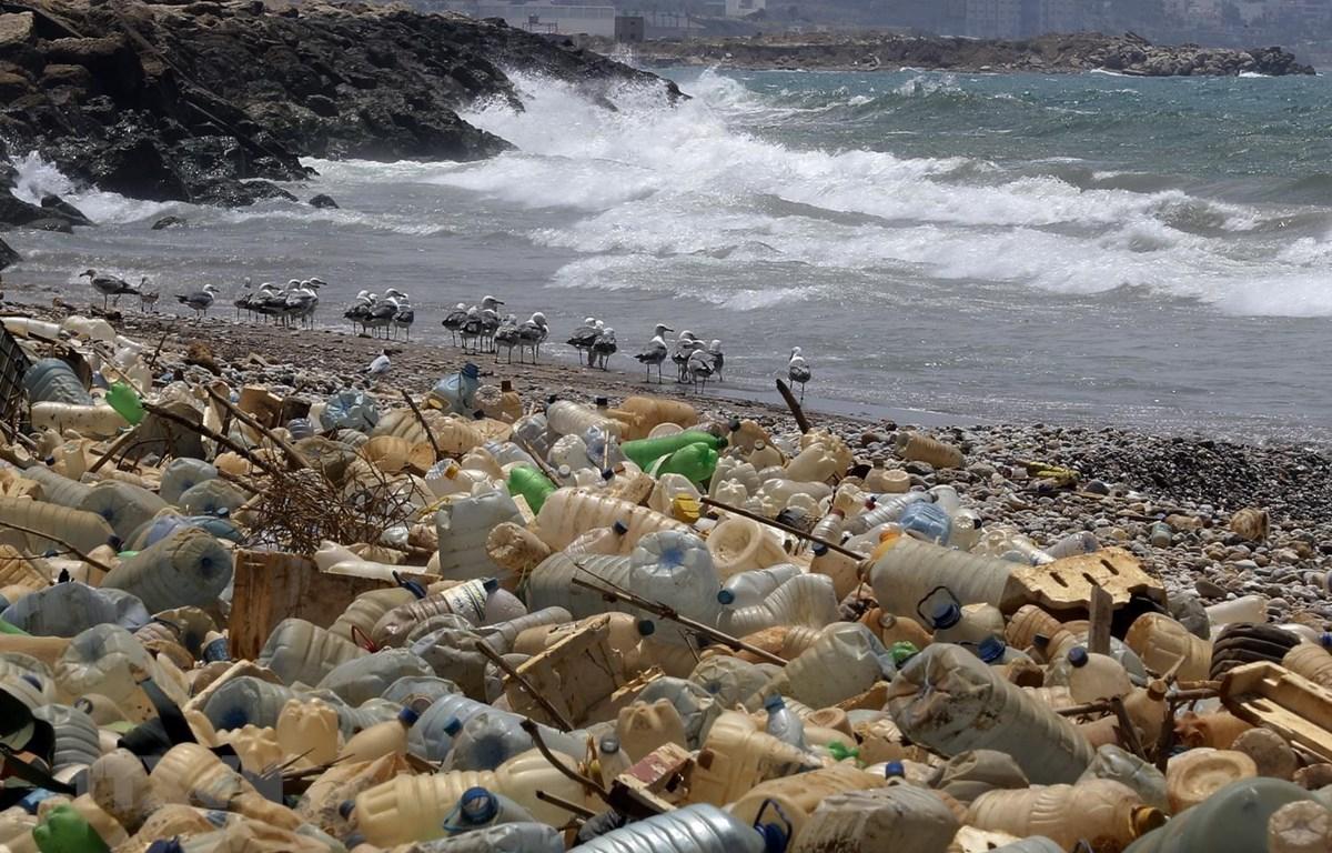 Rác thải nhựa trôi dạt vào bờ biển ở Ouzai, phía nam Beirut, Liban. (Ảnh: AFP/TTXVN)