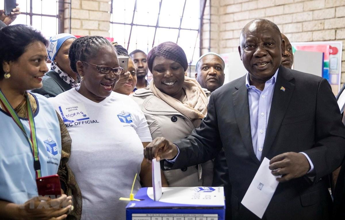 Tổng thống Nam Phi Cyril Ramaphosa (phải) đồng thời là Chủ tịch đảng Đại hội Dân tộc Phi (ANC) cầm quyền bỏ phiếu tổng tuyển cử tại điểm bầu cử ở Soweto ngày 8/5 vừa qua. (Ảnh: AFP/TTXVN)