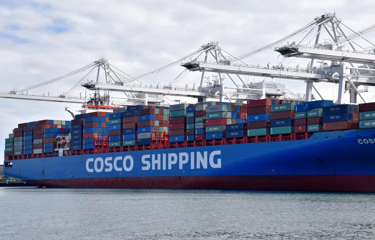 Container hàng của Công ty vận tải Trung Quốc COSCO tại cảng Long Beach, Los Angeles, Mỹ ngày 27/2 vừa qua. (Nguồn: THX/TTXVN)