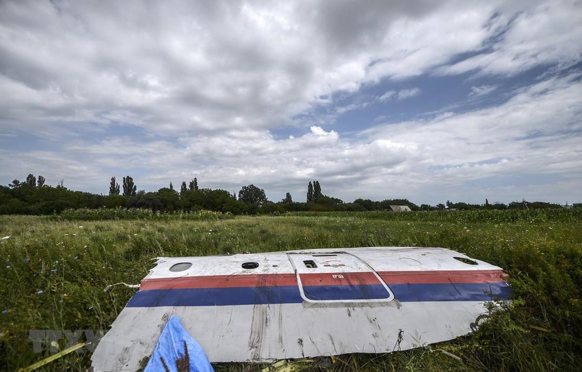 Một phần xác máy bay MH17 trên cánh đồng gần làng Grabove, vùng Donetsk, miền đông Ukraine ngày 20/7/2014. (Ảnh: AFP/TTXVN)