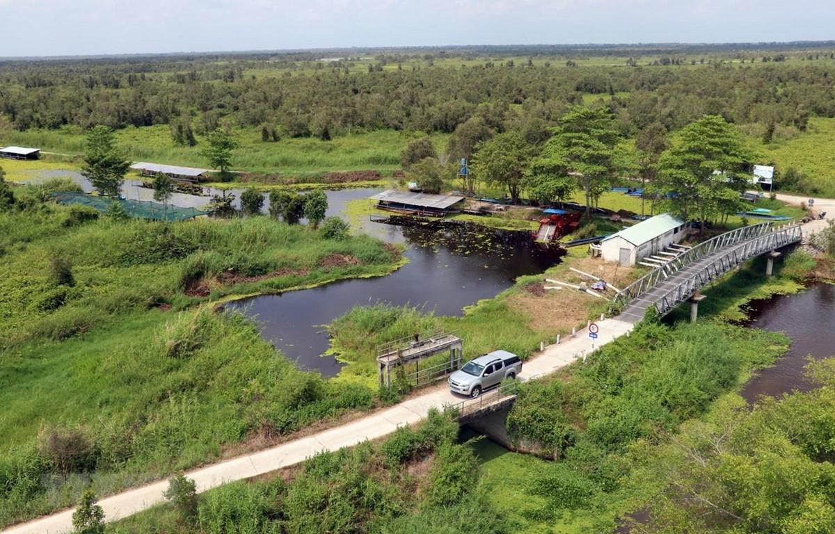 Giao thông phục vụ du khách tham quan Vườn Quốc gia U Minh Thượng ở tỉnh Kiên Giang. (Ảnh: Lê Huy Hải/TTXVN)