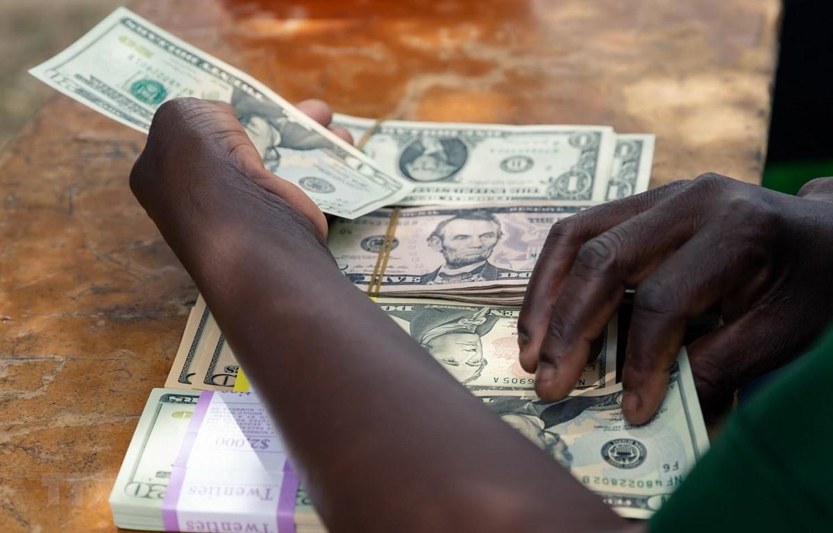 Kiểm đồng USD tại Mutoko của Zimbabwe. (Ảnh: AFP/TTXVN)