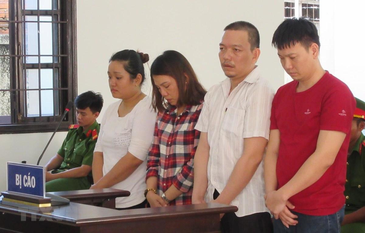 Các bị cáo tại phiên xét xử. (Ảnh: Nguyễn Thành/TTXVN )