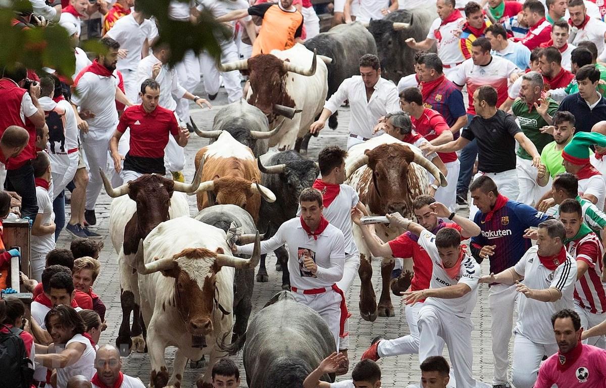 Du khách tại lễ hội rượt bò San Fermin ở Pamplona của Tây Ban Nha, ngày 9/7 vừa qua. (Ảnh: AFP/TTXVN)