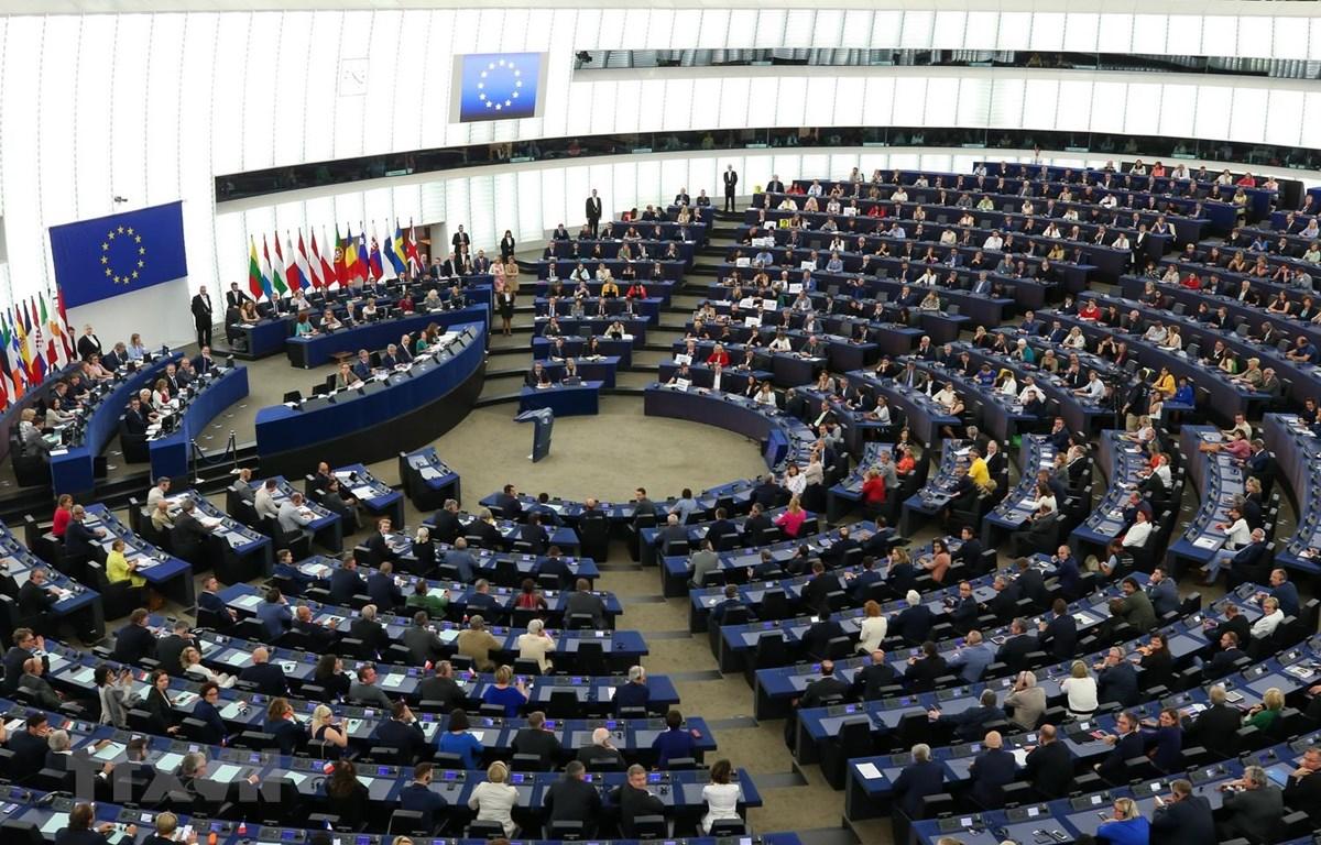 Một phiên họp của Nghị viện châu Âu ở Strasbourg tại Pháp. (Ảnh: THX/TTXVN)