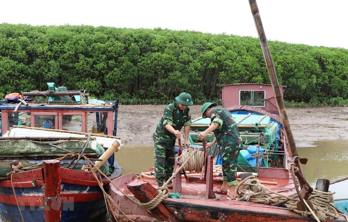 Bộ đội Biên phòng tỉnh Ninh Bình giúp ngư dân phòng chống bão. (Ảnh: Ninh Đức Phương/TTXVN)