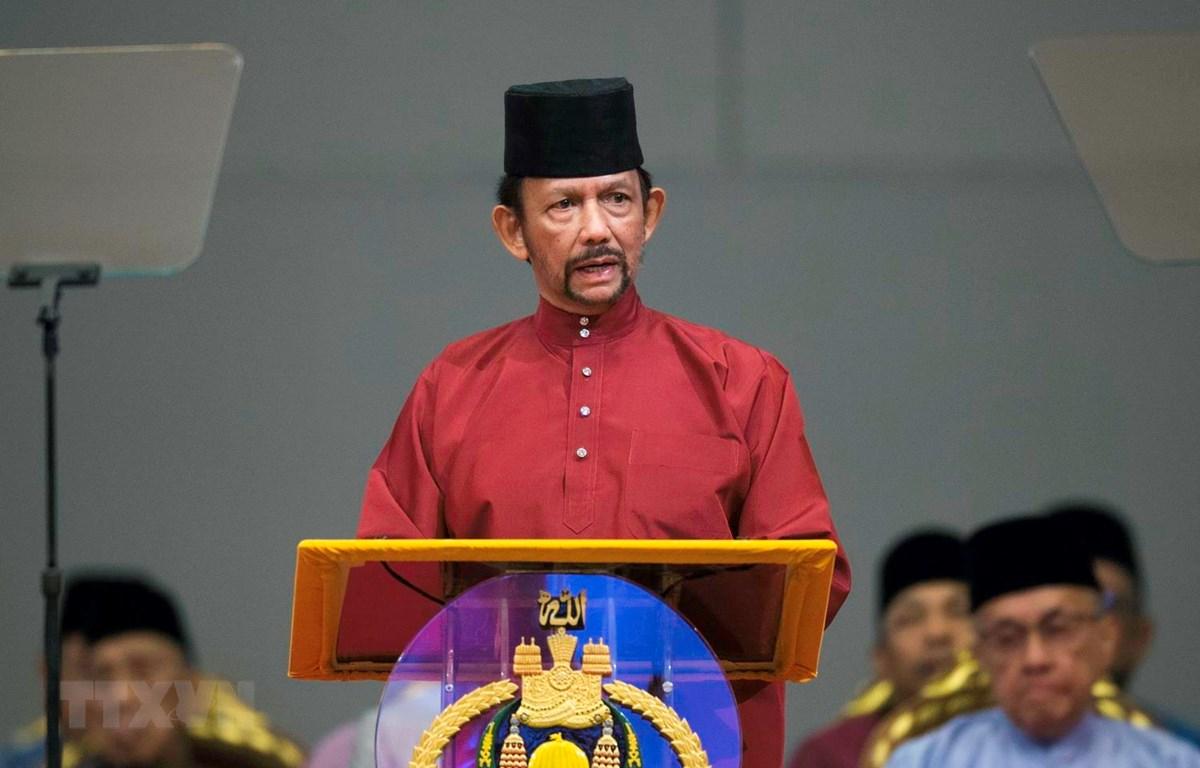 Quốc vương Brunei Hassanal Bolkiah. (Ảnh: AFP/TTXVN)