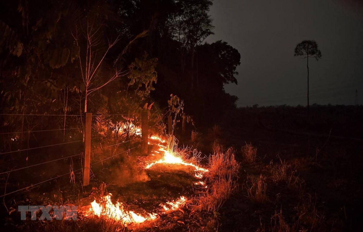 Đám cháy tại rừng Amazon ở gần Abuna, bang Rondonia, Brazil, ngày 24/8 vừa qua. (Ảnh: AFP/TTXVN)