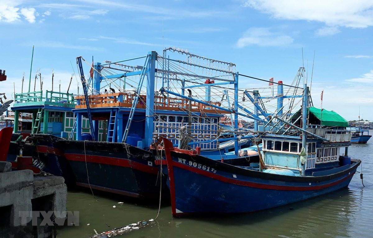 Tàu cá của ông Trần Đào (giữa), xã Phước Diêm, huyện Thuận Nam, hành nghề chụp đã nằm tại cảng Cà Ná hơn ba tháng vì hoạt động thua lỗ. (Ảnh: Nguyễn Thành/TTXVN)