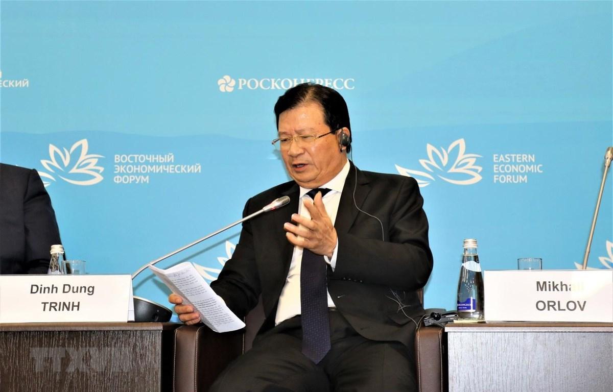 Phó Thủ tướng Trịnh Đình Dũng phát biểu tại hội thảo. (Ảnh Dương Trí/TTXVN)