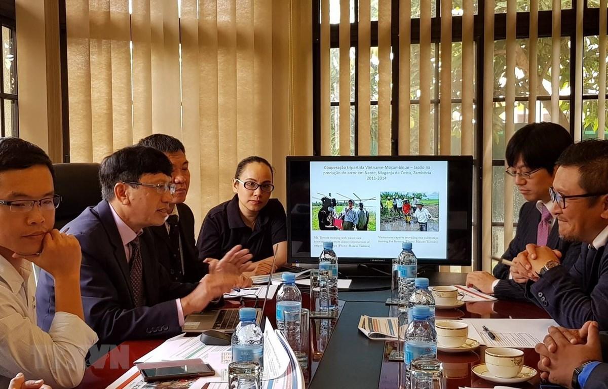 Đại sứ Lê Huy Hoàng và đại diện doanh nghiệp Việt Nam-Nhật Bản trao đổi về các biện pháp đẩy mạnh tiến độ Dự án sắp tới. (Ảnh: Đình Lượng/TTXVN)