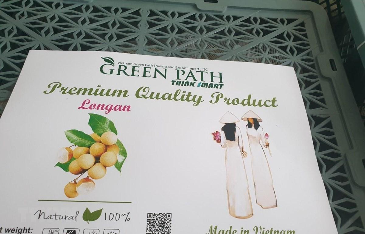 Quả nhãn là loại trái cây thứ 4 của Việt Nam được Australia cấp phép nhập khẩu, sau quả vải, xoài và thanh long. (Ảnh: TTXVN phát)